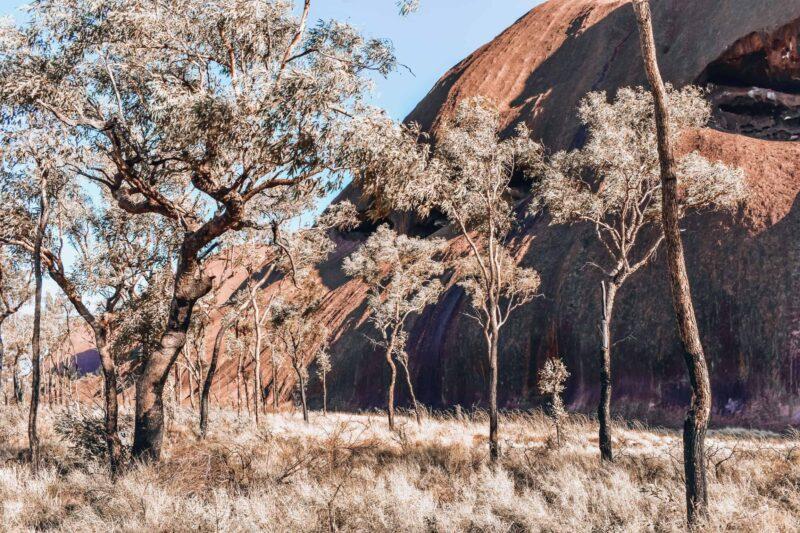 Base Walk at Uluru