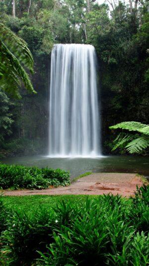Millaa Millaa Waterfall Circuit in North Queensland Australia